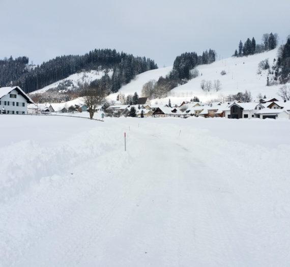 Nach 1 Woche Urlaub im Schnee geht es wieder los…